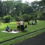 Sejenak ke Kebun Raya Bogor saat pandemi